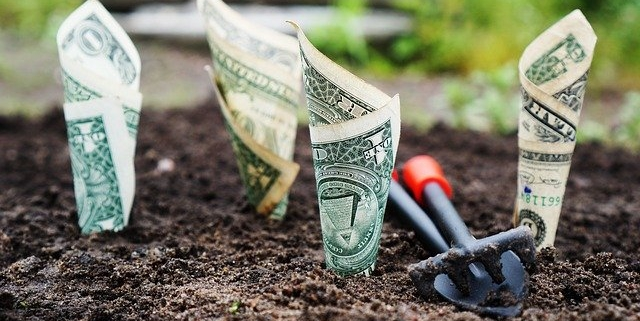 geld laten groeien